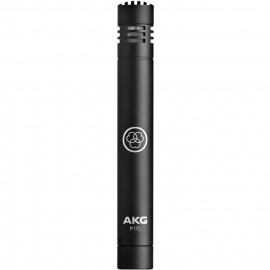 AKG Perception P170