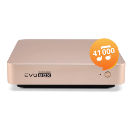Караоке-система для дома EVOBOX Plus [Gold]
