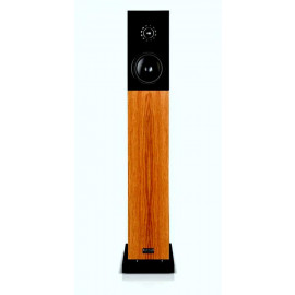 Audio Physic CLASSIC 20 Walnut