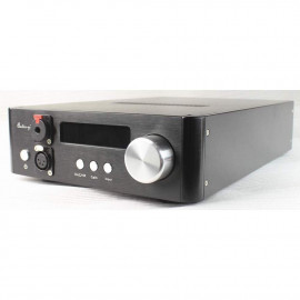 Audio-gd NFB-29 (2 TXCO