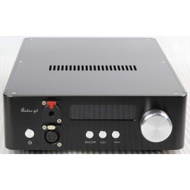 Audio-GD NFB-28 (2*TCXO)