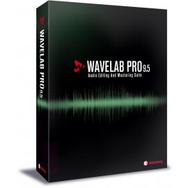 Steinberg WaveLab Pro 9 5 EE